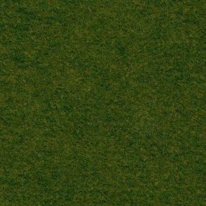 Grassy Meadows